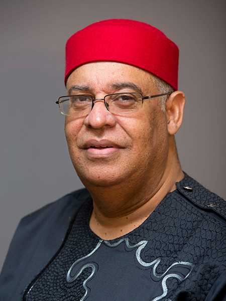 Dr. Mark Abani                       CEO, MSCA projects