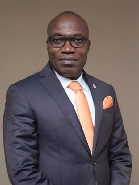 Mr. Johnson Chukwu              CEO, Cowry Asset Management