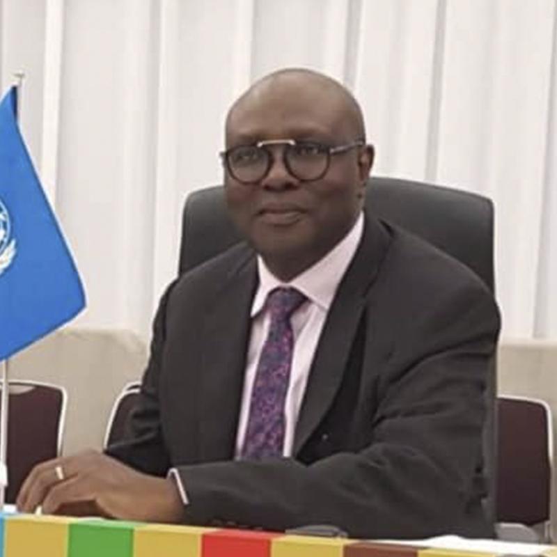 Prof. Afeikhena Jerome